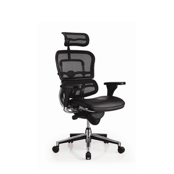 Mesh ergohuman chair with headrest leather seat